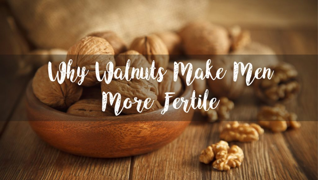 Why Walnuts Make Men More Fertile