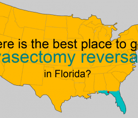 Where is the best place to get a vasectomy reversal in Florida?