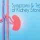 Symptoms & Treatment of Kidney Stones