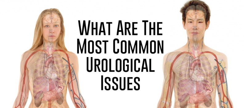 What Are The Most Common Urological Issues