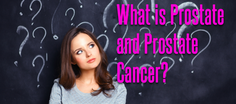What is Prostate and Prostate Cancer?