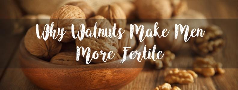 Why Walnuts Make Men More Fertile